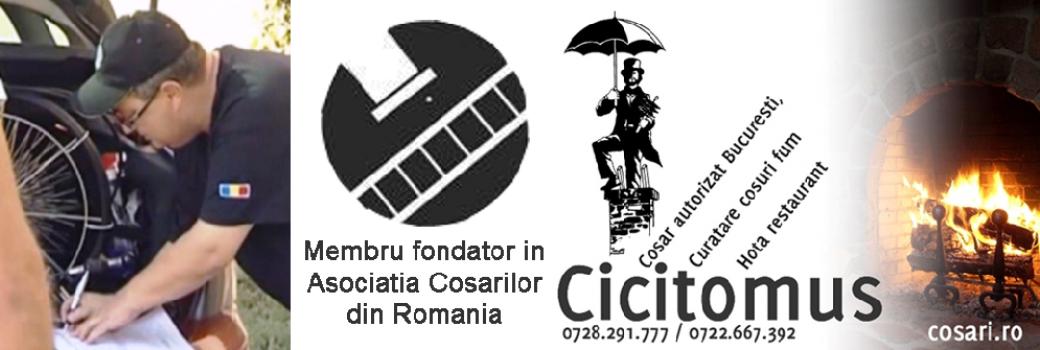 cosar autorizat Bucuresti